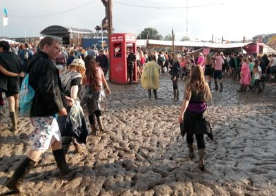 Our 2015 top festival picks