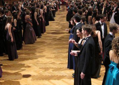 Volunteering: A Palace Waltz